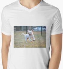 Frolicking! T-Shirt
