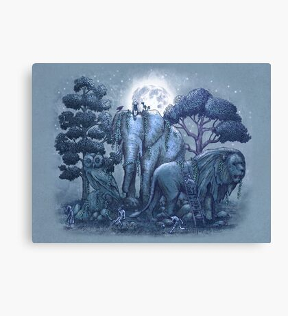 Midnight in The Stone Garden Canvas Print