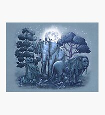Midnight in The Stone Garden Photographic Print