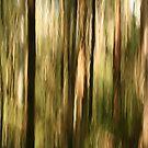 Bush spirits by LouD