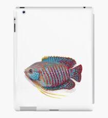 Dwarf Gourami  iPad Case/Skin