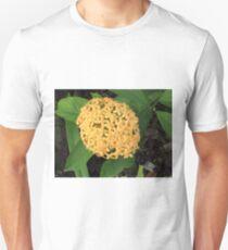 Bouqet of Orange T-Shirt