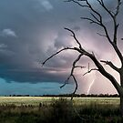 Trundle Lightning by David Haworth