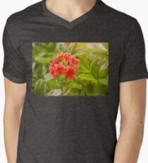 Il Tasso Rhododendron called Azalea Mens V-Neck T-Shirt