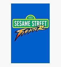 Sesame Street Fighter Photographic Print