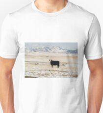 Black Baldy Cows Unisex T-Shirt