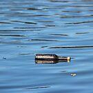 Bottle reflection by Valeria Lee