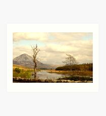 Mount Errigal From The Lodge Art Print