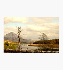 Mount Errigal From The Lodge Photographic Print