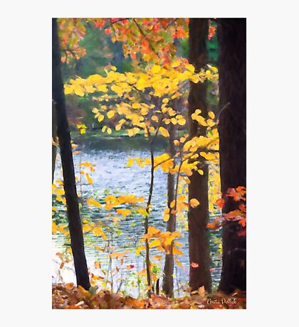 Autumn by the River Photographic Print
