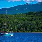 Sailboat on Twin Lake in Colorado Mountain Paradise by Roschetzky