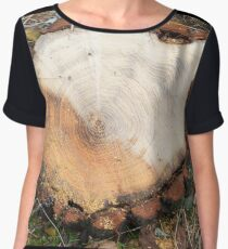 Top view of a fresh cut tree stump on the forest Women's Chiffon Top