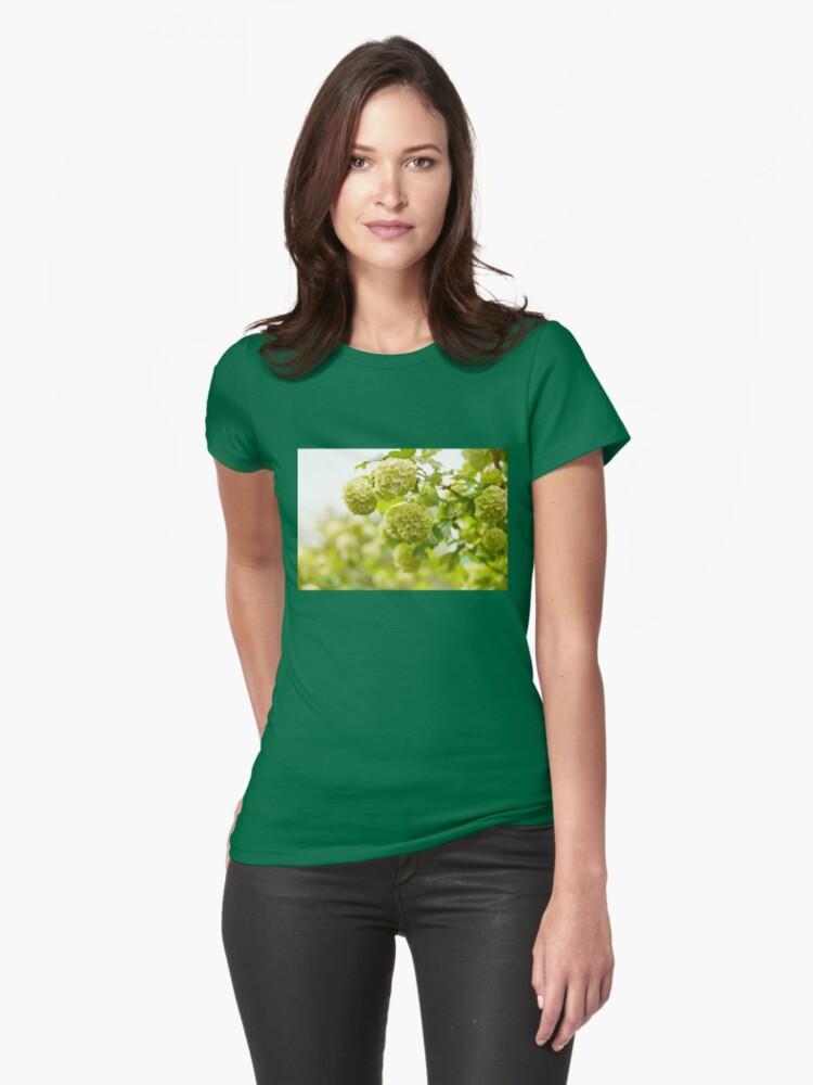 Viburnum opulus Roseum flowers Womens T-Shirt Front