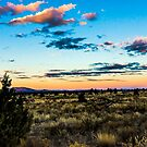 sunset 41Redmond by Richard Bozarth