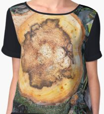 View from above on the surface of a fresh cut tree stump Women's Chiffon Top