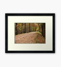 footpath perspective away Framed Print