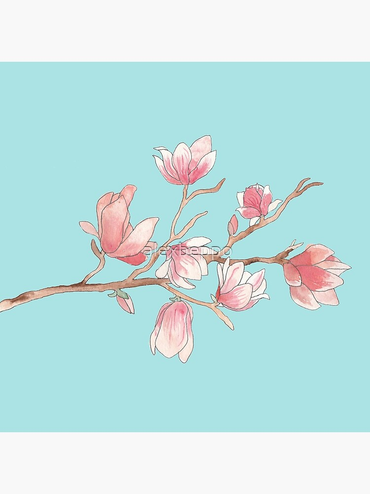 Watercolour Magnolia by alexbeppo