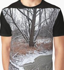 Pond in The Woods Graphic T-Shirt