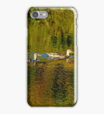 Autumn Feathers And Rippled Reflections iPhone Case/Skin