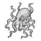 Cute Octopus :) by eugeniahauss