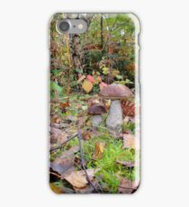 Ceps and Autumn Leaves iPhone Case/Skin