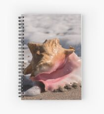 Pink Conch Shell Spiral Notebook