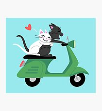 Scooter Cats in Love Photographic Print
