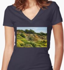 San Francisco Colorful Spring - 2 Women's Fitted V-Neck T-Shirt