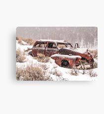 Auto in Snowstorm Canvas Print