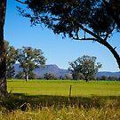 The Grampian Mountains, Victoria, Australia. by johnrf
