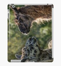 Sweet Llamas iPad Case/Skin