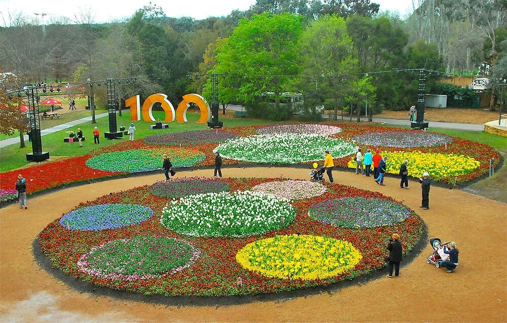 100 Years of Canberra at Floriade by Penny Smith