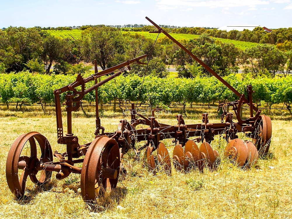 The vineyard past and present by indiafrank