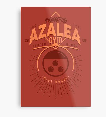Azalea Gym Metal Print