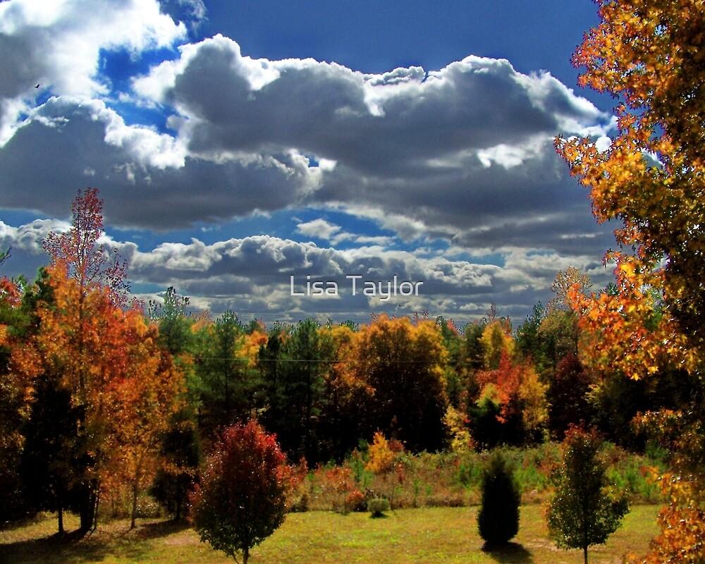 South Carolina Fall by Lisa Taylor
