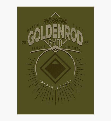 Goldenrod Gym Photographic Print