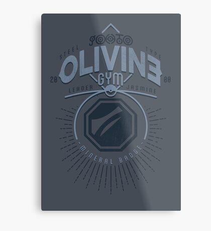 Olivine Gym Metal Print