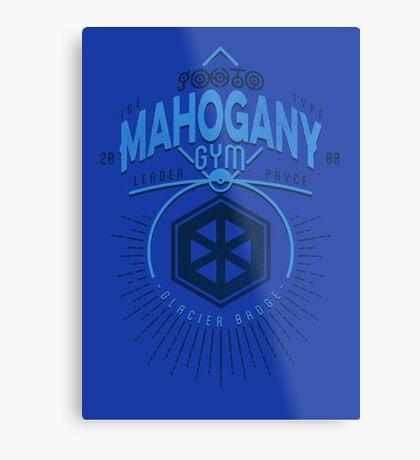 Mahogany Gym Metal Print