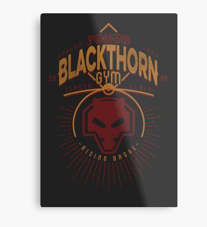 Blackthorn Gym Metal Print