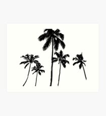Tropical palms in monochrome Art Print