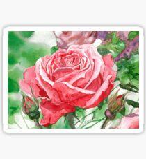 Red Rose in Full Blossom Sticker