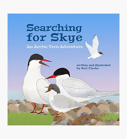 Searching for Skye: An Arctic Tern Adventure Photographic Print