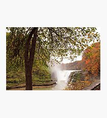 Falls through the Green Leaves Photographic Print
