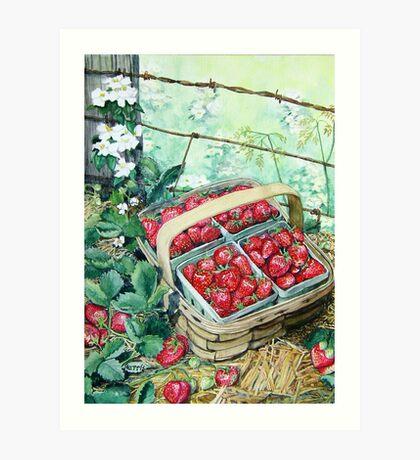 Strawberries in a Basket Art Print