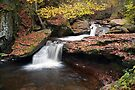 October Stop At Aaron's Cascade by Gene Walls
