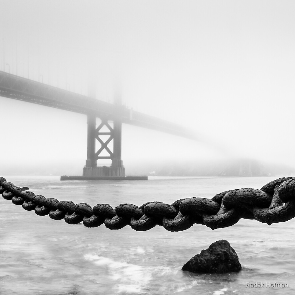 Morning Fog by Radek Hofman