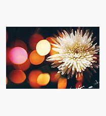 Blurred Nature Background with Flower Photographic Print