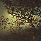 Melancholy Tree by SpinTheMoon