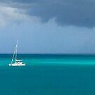 Catamaran in Antigua by Christine  Wilson