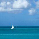 White Sailboat in Antigua by Christine  Wilson